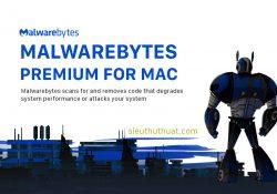 Malwarebytes Premium cho Mac 3.2.36 – Loại bỏ phần mềm độc hại