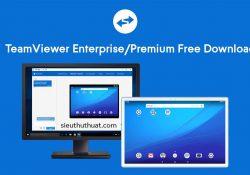 TeamViewer v13.0.6447 Enterprise/Premium bản quyền mới nhất